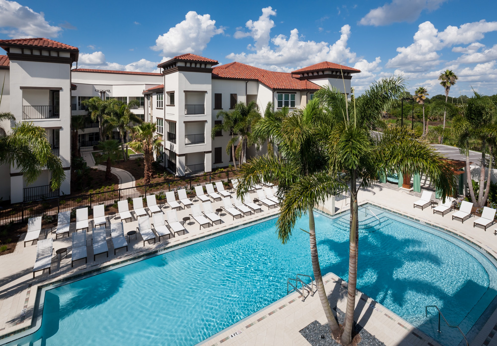 westshore resort style pool with chaise lounge chairs, palm trees, and view of apartment building and wooded area in the background - jefferson apartment group