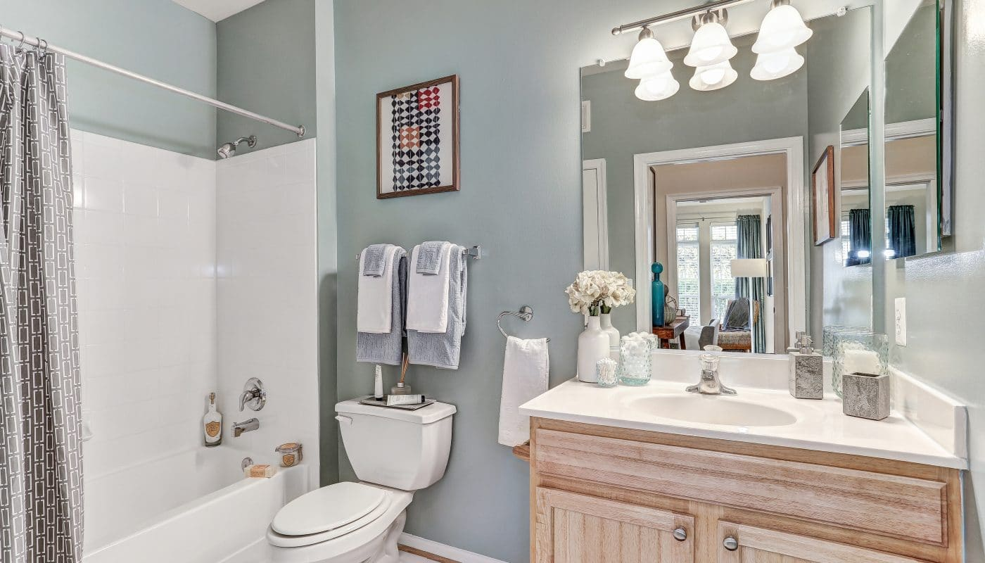 arbors at broadlands bathroom with tub, shower, quartz vanity and large mirror - jefferson apartment group